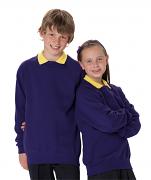 7620B Kid's Classic Raglan Sleeve Sweatshirt