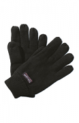 RG260 Thinsulate Glove